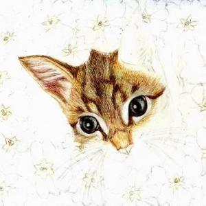 途中経過3 (花と子猫)