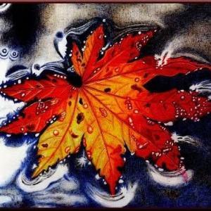 秋の彩り 秋の香り