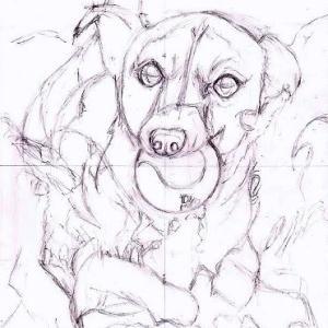 途中経過1 下描き1(海辺で遊ぶ犬)