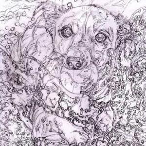 途中経過3 下描き3(海辺で遊ぶ犬)