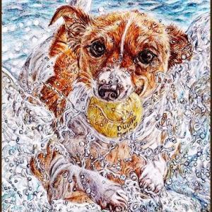 色鉛筆画555 (海辺で遊ぶ犬)