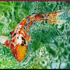 色鉛筆画・鯉