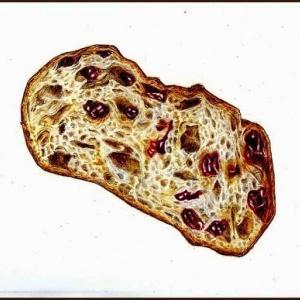 色鉛筆画・レーズンのパン