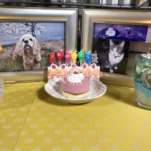 21回目の誕生日