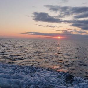 今季初ヒラメ2回目釣行でゲット!