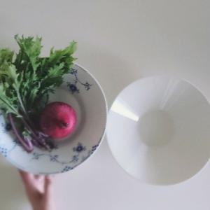 ROYAL COPENHAGEN◆ロイヤルコペンハーゲン ブルーエレメンツ ディーププレート と  arabia kokoアラビア ココ ボウルは 同じサイズ感だった件 /北欧 食器 大皿プレート