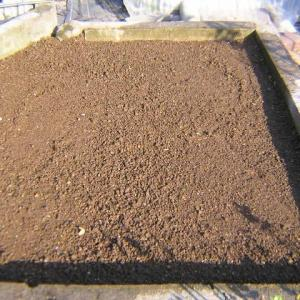 かぶ(蕪)の畝作りと種まき