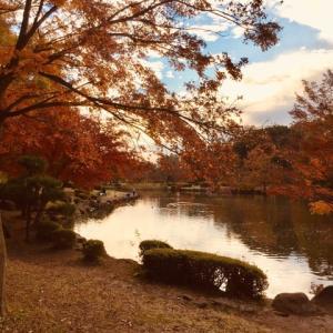 童謡「めだかの学校」の楽譜碑のある「こども自然公園」。