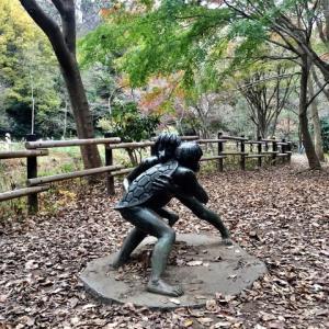 自然溢れる秋の舞岡公園瓜久保の里。