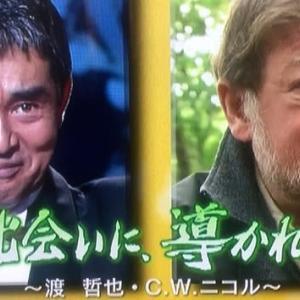 亡くなった渡哲也さんとニコルさんの出会いと言葉。