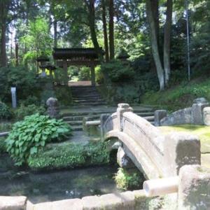鎌倉ウオーキング~葛原岡・源氏山ハイキングコース