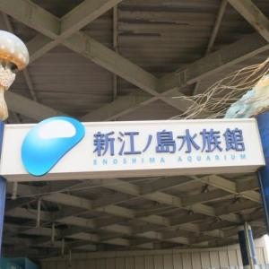 新江ノ島水族館見学