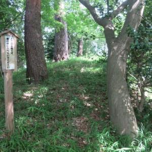 多摩川台公園散策