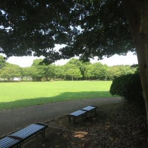 ぶらりJOG~里山公園