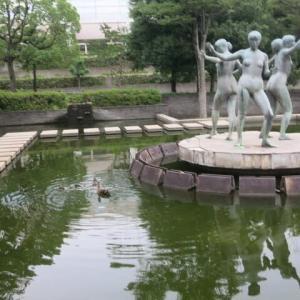 ぶら散歩~緑地公園