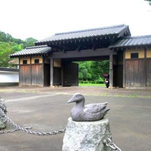 ブラ散策~座間谷戸山公園