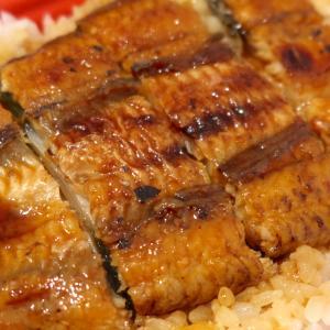 浦添「うなぎ専門 一麦食品」の800円と1000円のうなぎ弁当を食べ比べ