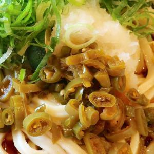 「丸亀製麺」の青唐おろしぶっかけうどんがメッチャ辛かった!