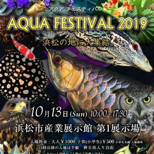 次のイベントはアクアフェスティバルです。