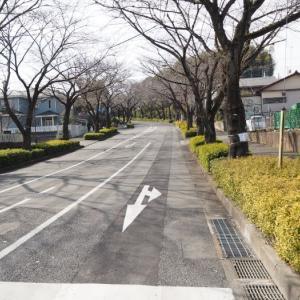 町田GIONスタジアムの歩き方 ~番外編・路線バスでのアクセスに挑戦~