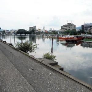 雄琴港でバス&ギル釣り