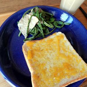 山菜を採りに&今朝の朝食