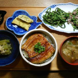 贅沢な夕食・国産うなぎ丼