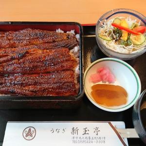 豪華なランチと質素なお夕食・・・(⌒▽⌒)