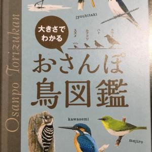 野鳥の会が、無料で配布している小図鑑。