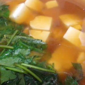 寒い日には最高!お味噌汁のススメ ~わたしの健康法より~