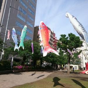 【祝】こどもの日  令和元年 五月五日  東京 恵比寿