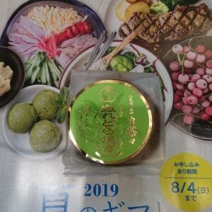 《夏限定!!》 ぬれどら焼きプレミアム白茶々 by 梅月堂