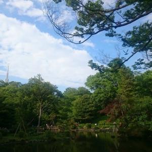 ☆ 初夏 の 有栖川宮記念公園  令和元年 六月 ☆
