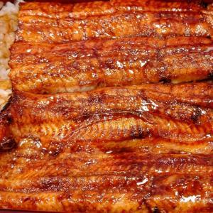鰻専門店 愛川@高田馬場  職人の技。気持ちいいサービスで極上鰻を食べる!