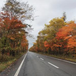 秋、旅へ⑤