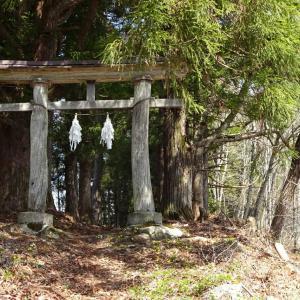 5月初めの陣場平山◆葭雰神社(よしきりじんじゃ)にて