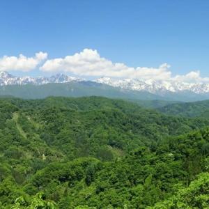 峰街道◆目には青葉 山ほととぎす 初鰹 (2)
