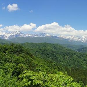 峰街道◆目には青葉 山ほととぎす 初鰹 (3)