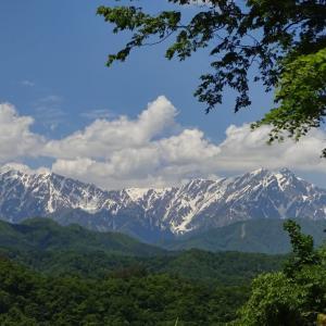 峰街道◆目には青葉 山ほととぎす 初鰹 (5)