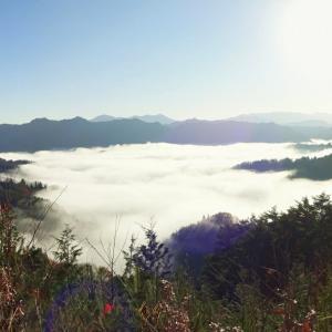 雲海を見ながら大峰高原へ