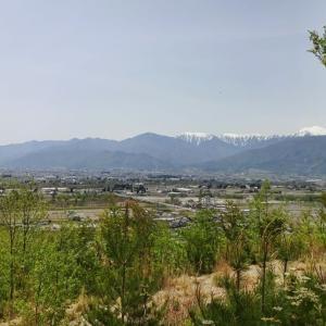 5月の晴れた空 ~ 押野山で散歩した