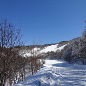 天気が良いので高い所に行って景色を眺めてみたくなって・・・峰の原高原
