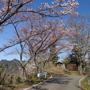 【生坂村】 棚の平公園 ・・・春の午後 [South side]