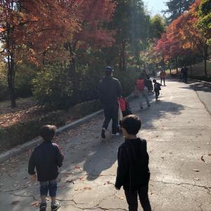 韓国生活と年賀状