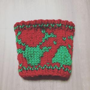 編み込み模様のレッスンスリーブ