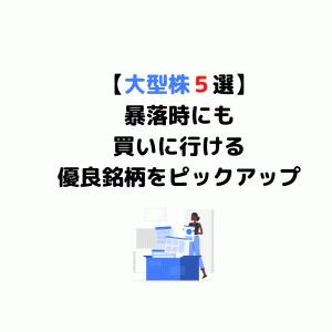 【おすすめ大型株5選】暴落時にはすかさず買いたい優良銘柄