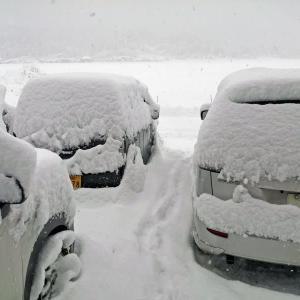 今週の積雪は少々パンチがあった。 By_Niigata 2021
