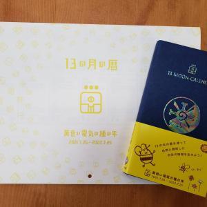 ~ 新年 ~ 開花を目指して繋がる KIN224 黄色い電気の種