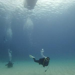 透明度の良い大浦湾