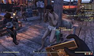 Fallout76雑感 その38 FO76のどうでもいい話5